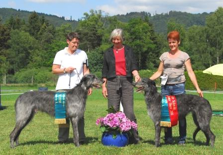 Clubmatch Schweiz 2011 - best dog